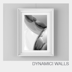 picture hanging systems dynamic wall